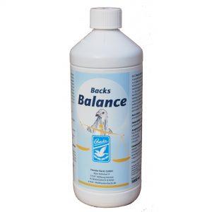 1340-Balance